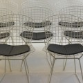 Set of 8 white side chairs by Harry Bertoia image 1