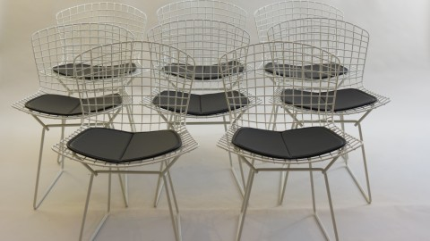 Set of 8 white side chairs by Harry Bertoia