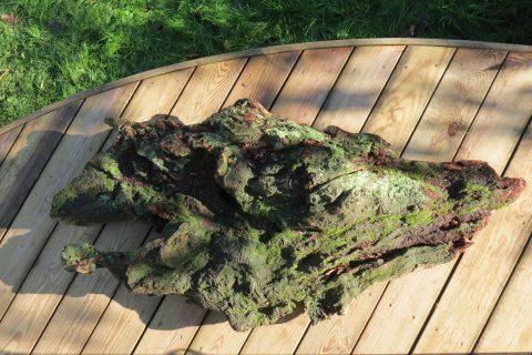Zen Landscape Sculptural Wood