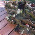Zen Landscape Sculptural Wood image 3